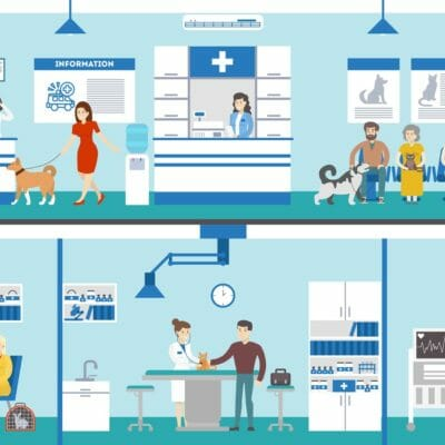 How the Valuation of a Veterinary Practice Works