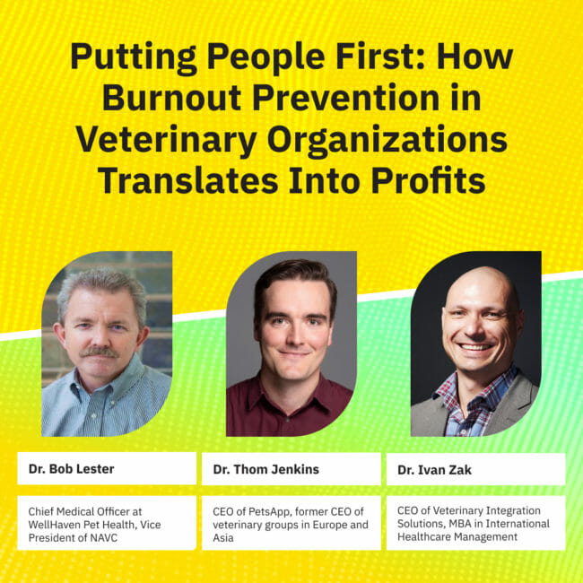 How Burnout Prevention in Veterinary Organizations Translates Into Profits: Webinar Recording and Transcript
